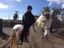 Lonni på hesteryg